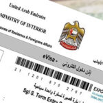 UAE: Apply for 5-year multiple-entry tourist visa; here's how much it will cost